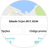 PETDRIVER-agendamento_2-passo