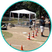 PETDRIVER-parque-boacava-2PETDRIVER-parque-boacava-2