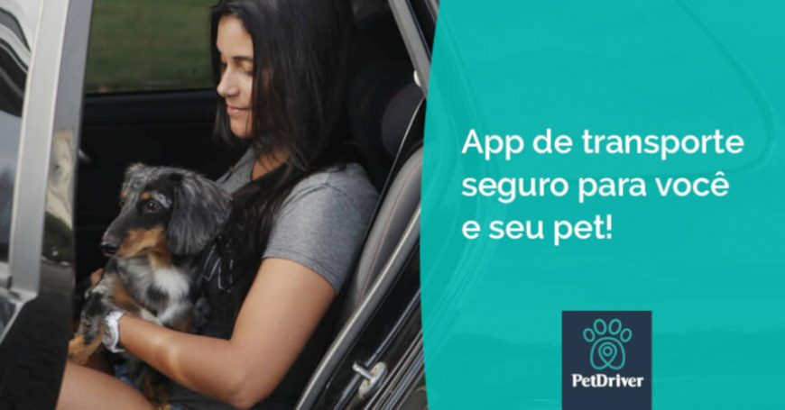 Lugares para ir na companhia do seu animal de estimação no Rio de Janeiro
