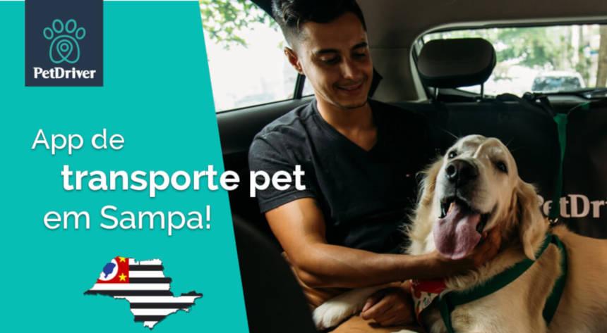 Lugares para ir na companhia do seu animal de estimação em São Paulo