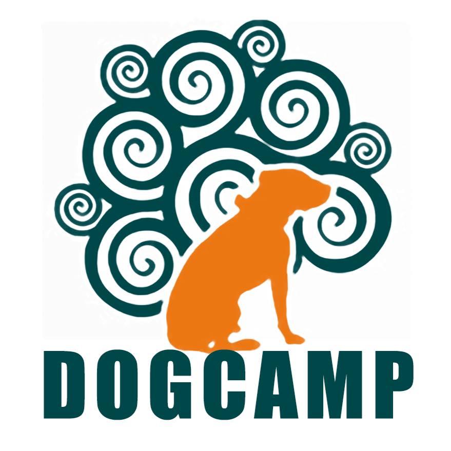 dog-camp-logo
