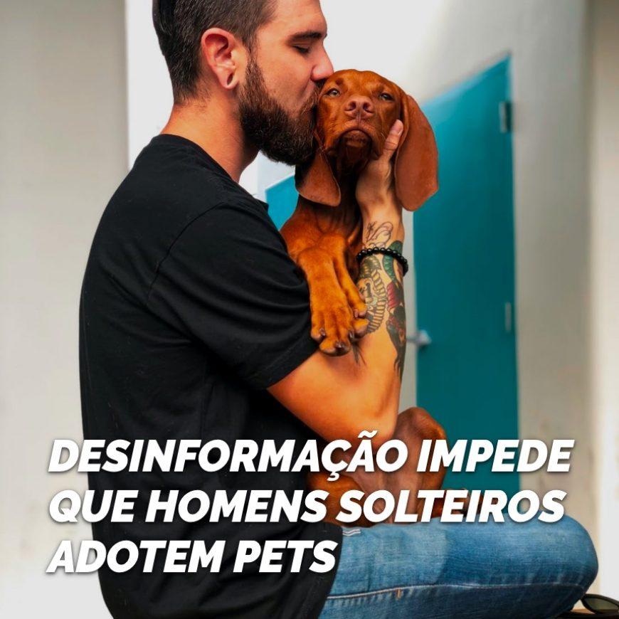 Desinformação impede que homens solteiros adotem pets