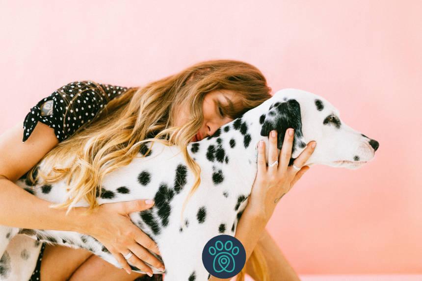 Outubro é mês da Rosa Pet na PetDriver!