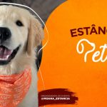 PETDRIVER_evento-Estancia-Pet-6Edicao_1