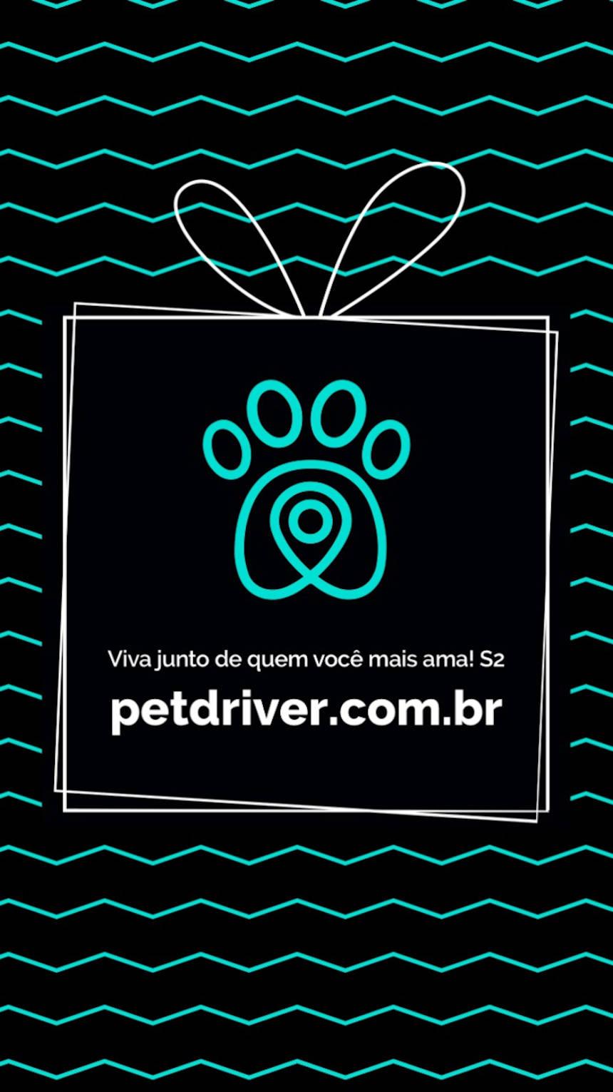 PETDRIVER_black-friday_19_blog(02)