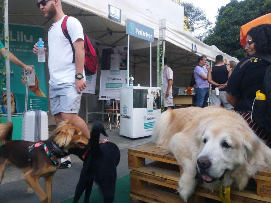 Pet Family Market: dois dias de muita animação em SP