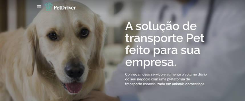 A solução de transporte Pet perfeita para sua empresa!