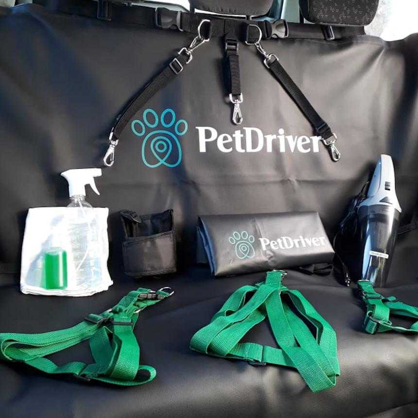 Conheça detalhes sobre a higienização da PetDriver