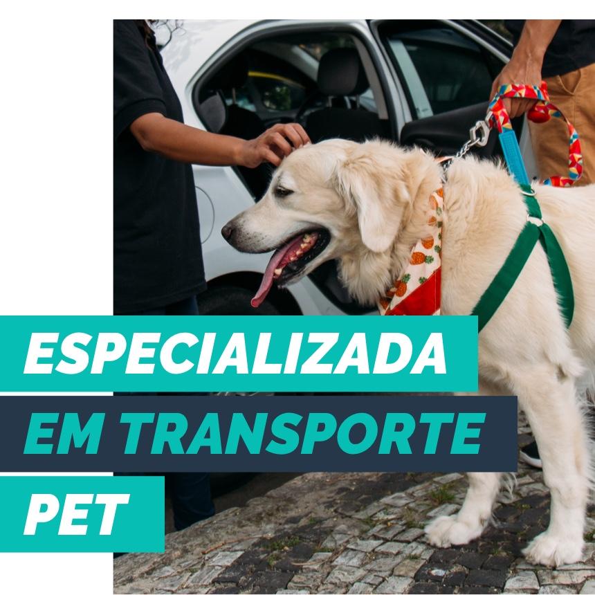 PetDriver é sinônimo transporte pet prático, confortável e econômico