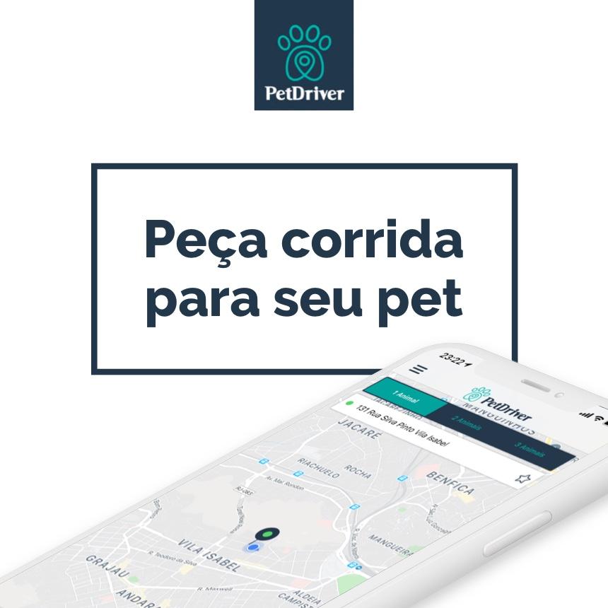 Veja como solicitar o motorista para seu pet ir sozinho no App PetDriver!