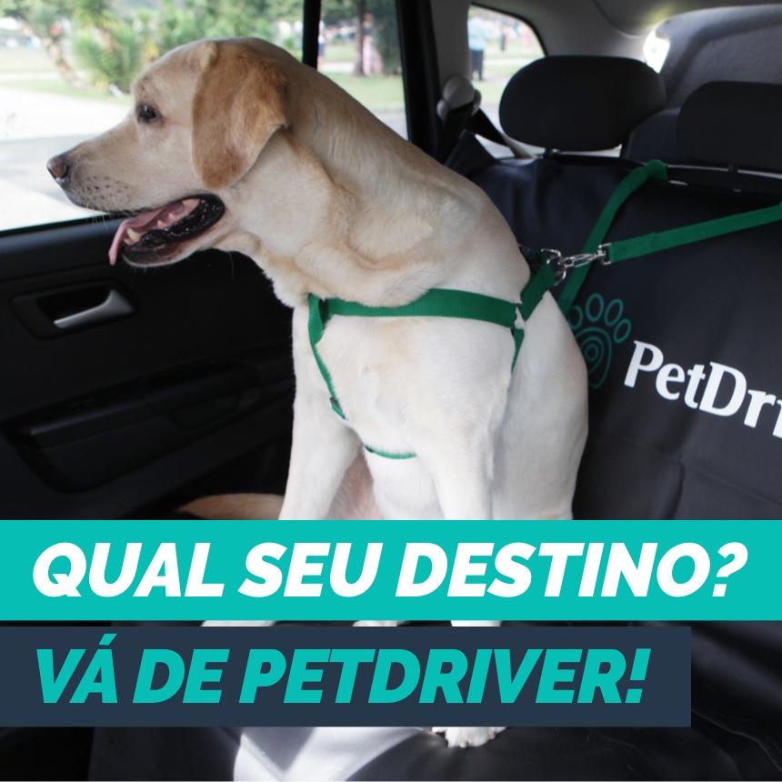 instagram-blog-post-petdriver-abril-como-os-clientes-estao-utilizando-a-petdriver-01