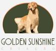 PETDRIVER_golden-sunshine-criacao_100