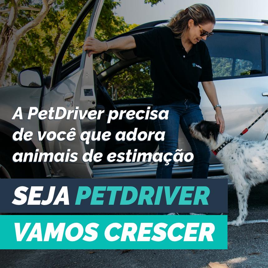 PetDriver é destaque na mídia em mobilidade urbana e transporte de animais domésticos