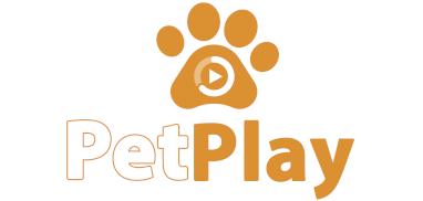 CLUBE-PETDRIVER_petplay