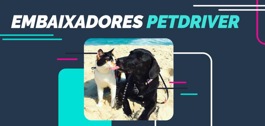 Conheça o novo time de peso de embaixadores PetDriver
