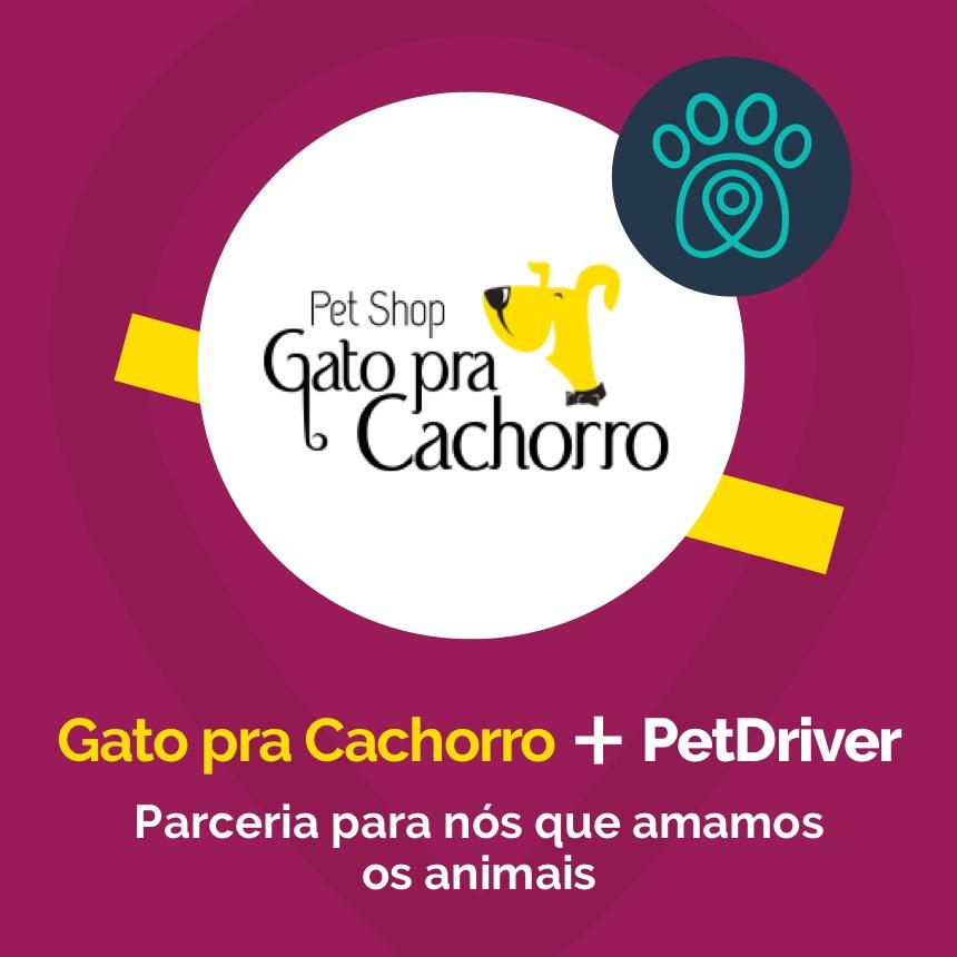 Gato pra Cachorro e PetDriver formam parceria por amor aos animais