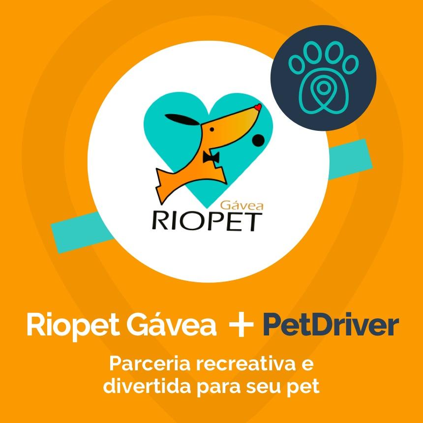 Riopet Gávea e PetDriver formam parceria para fazer o seu cão mais feliz