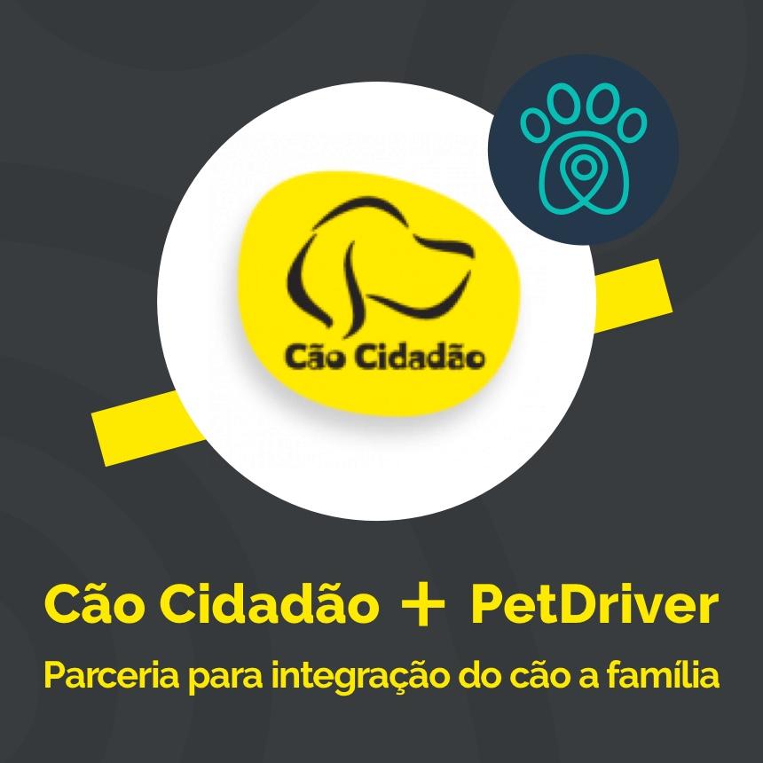 Cão Cidadão e PetDriver formam parceria para melhorar a interação dos peludos na sociedade