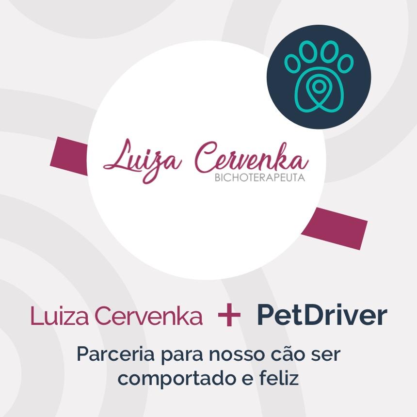 Luiza Cervenka e PetDriver mantém parceria para pets mais comportados e felizes