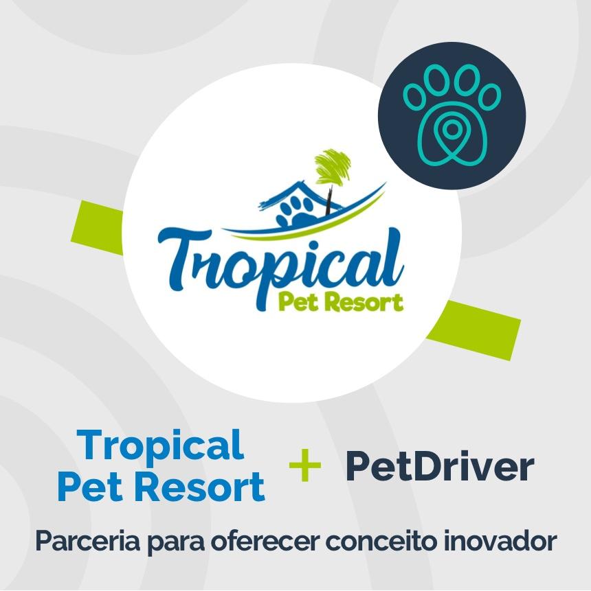 Tropical Pet Resort e PetDriver formam parceria de conceito inovador nos cuidados com os pets