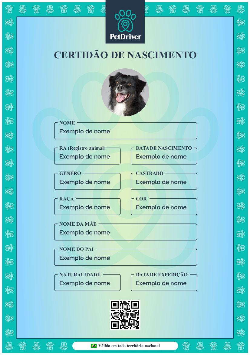 PETDRIVER_certidao-de-nascimento-pet(1)