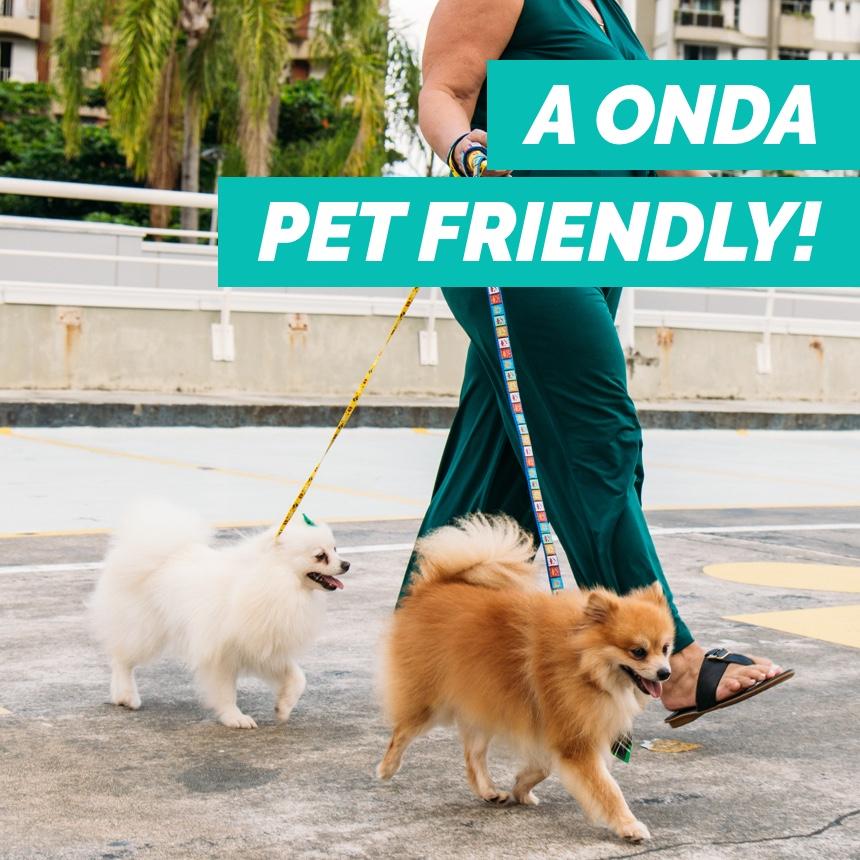 Ambientes pet friendly são oportunidades de negócios