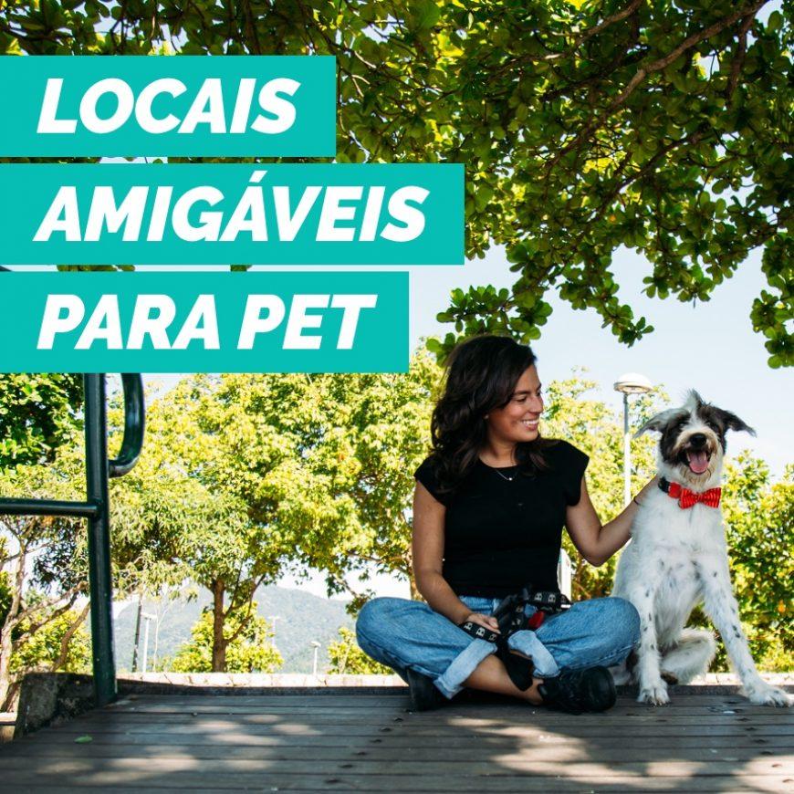 Conheça locais pet friendly em São Paulo para você frequentar com o seu cão