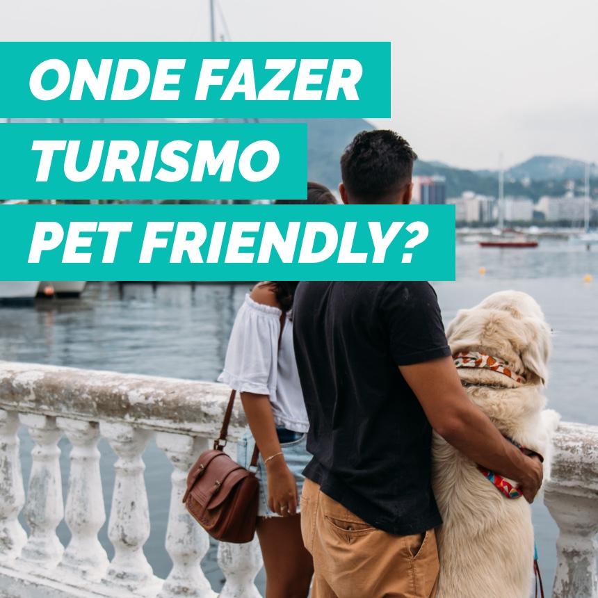 Turismo pet friendly: como se preparar e para onde ir com os pets nas férias