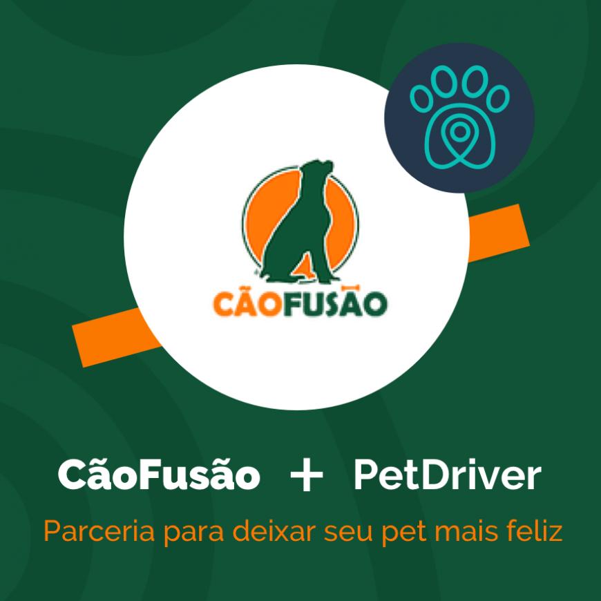 Cão Fusão e PetDriver formam parceria para deixar seu pet mais feliz