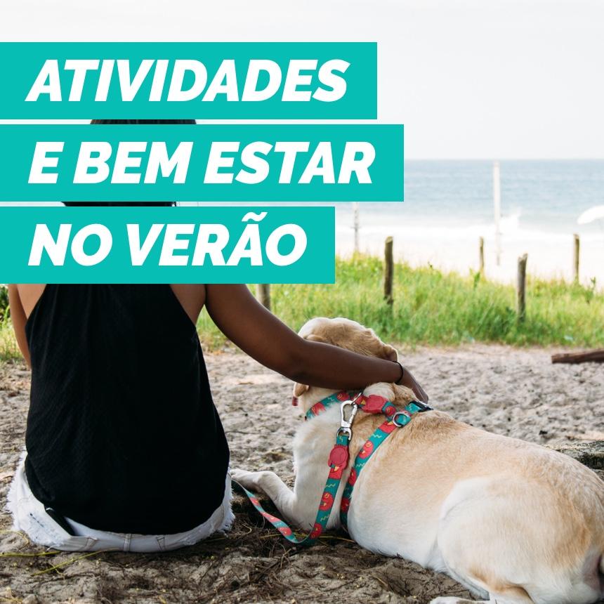 Verão Pet: dicas de bem-estar e atividades para fazer com o seu filho de 4 patas no verão