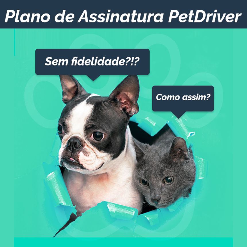 Plano de Assinatura PetDriver sem fidelidade!