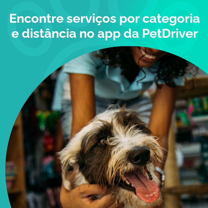 Agora você pode pesquisar estabelecimentos pet por categoria e distância no App PetDriver