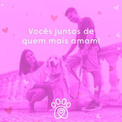 Dia dos Namorados: conheça locais pet friendly no RJ e em SP para ir com o seu amor e seu filho de 4 patas