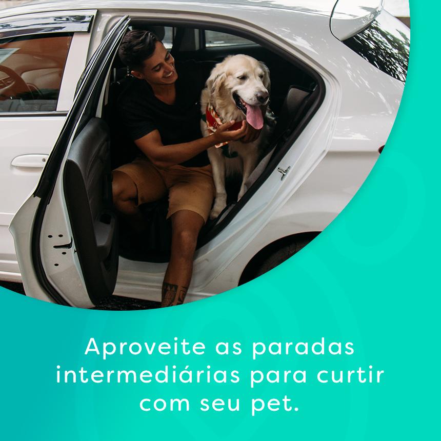 Veja como solicitar paradas intermediárias no app da PetDriver