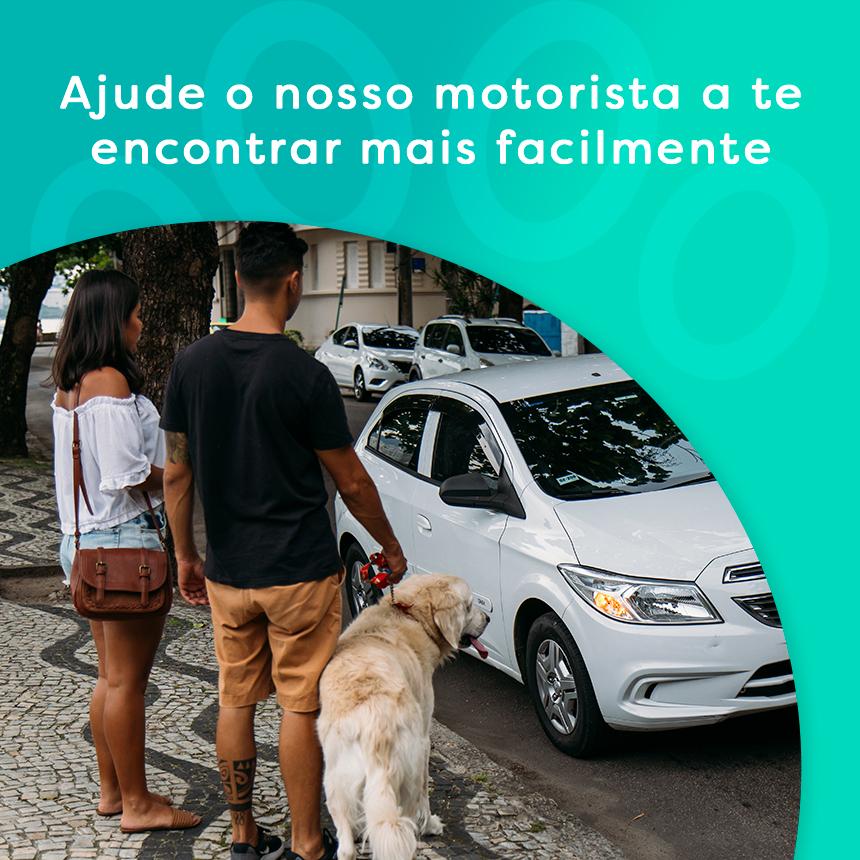 Transporte pet: ajude o nosso motorista pet friendly a te encontrar mais facilmente