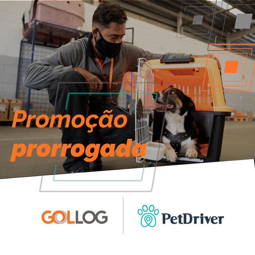 Transporte de animais na GOLLOG e PetDriver com até 40% de desconto no voo